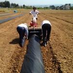 みんなの栽培日記|2015/05/06_福島市佐倉下と荒井の畑にて。